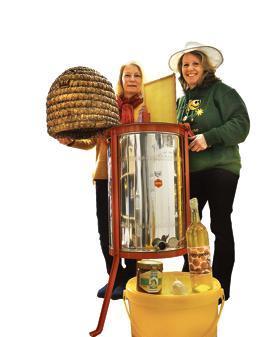 Bienen Osternburg: Nur die erste Babykönigin darf überleben