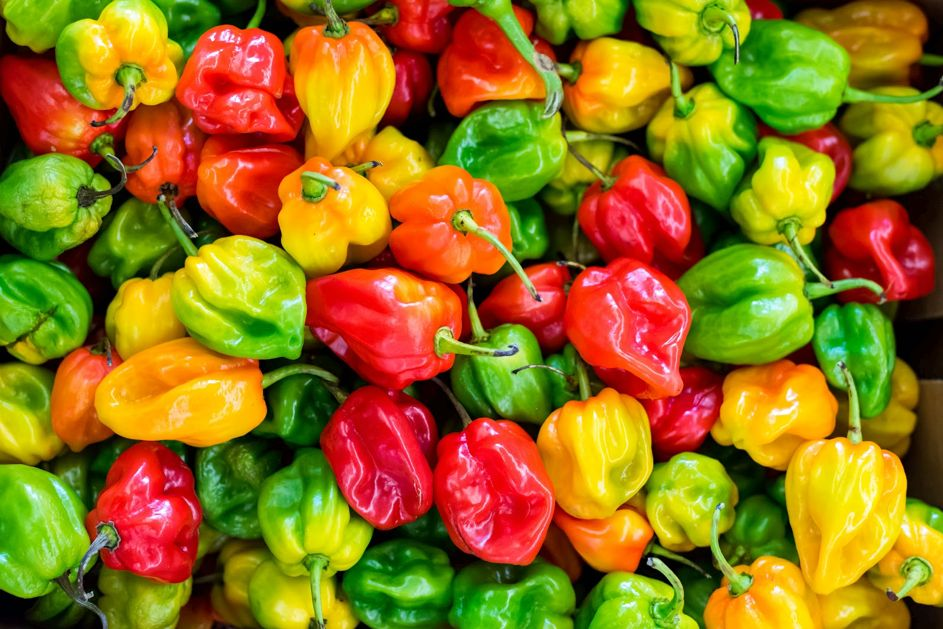 Spice up your kitchen: de chilipeper