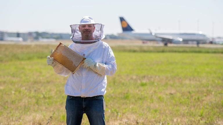 Biomonitoring: Mit Flughafenbienen die Luftqualität überprüfen