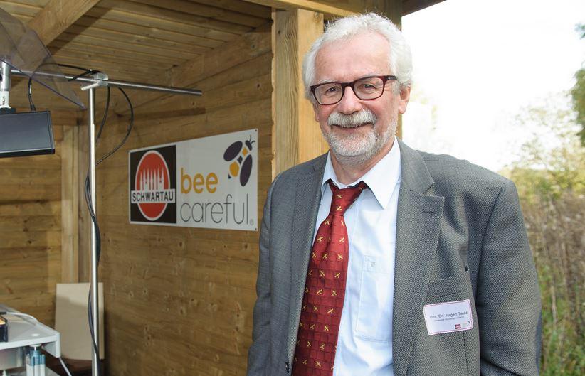"""Prof. Dr. Tautz: """"Es gibt kein allgemeines Bienensterben!"""""""