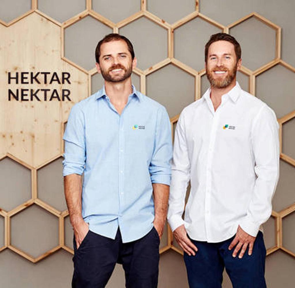 Honig-Start-ups: Diese Gründer setzen dem Bienensterben etwas entgegen